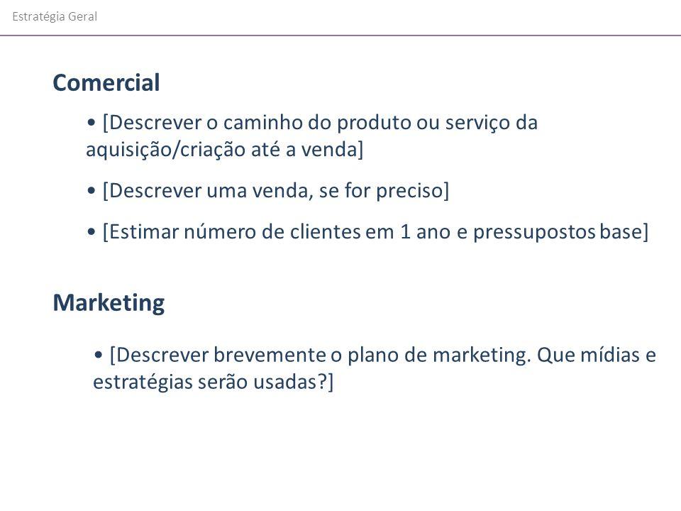 Estratégia Geral Comercial. [Descrever o caminho do produto ou serviço da aquisição/criação até a venda]